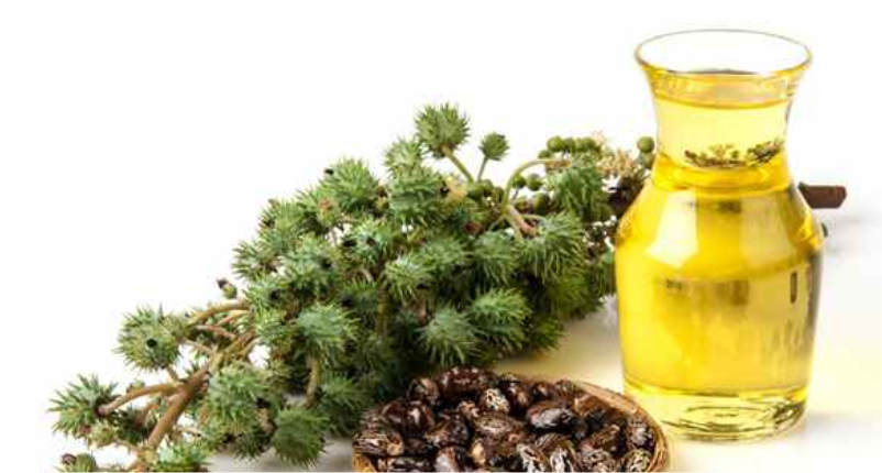 Castor-Oil-is-the-best-baby-massage-oil-for-your-little