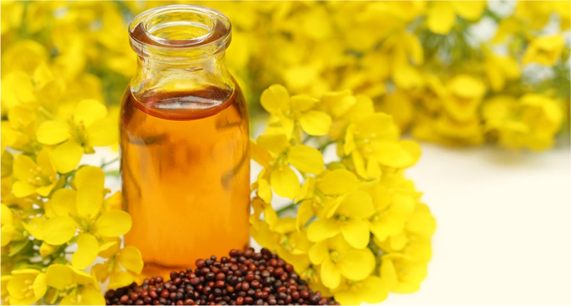 Mustard-Oil-is-the-best-baby-massage-oil-for-your-little